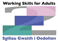 Working Skills for Adults Logo